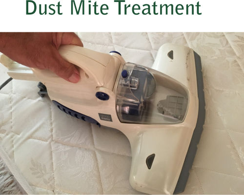 dustmitetreatmenthome